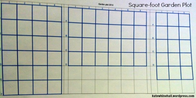 square foot garden plot