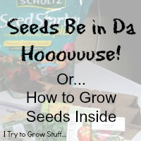 How to grow seeds inside