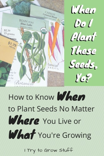 when do I plant seeds